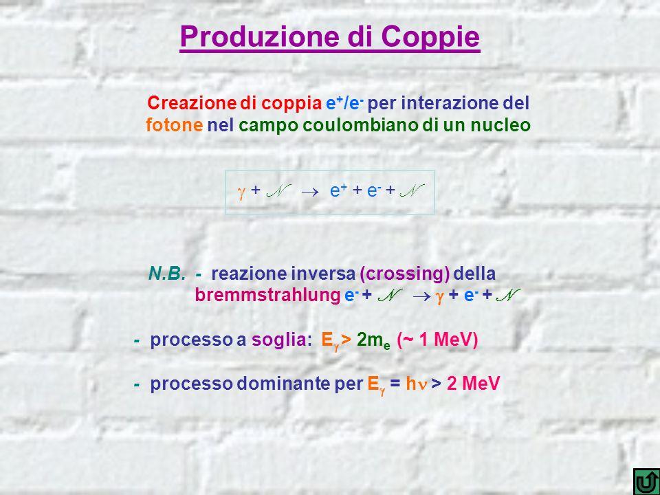 Produzione di Coppie Creazione di coppia e + /e - per interazione del fotone nel campo coulombiano di un nucleo + N e + + e - + N N.B. - reazione inve