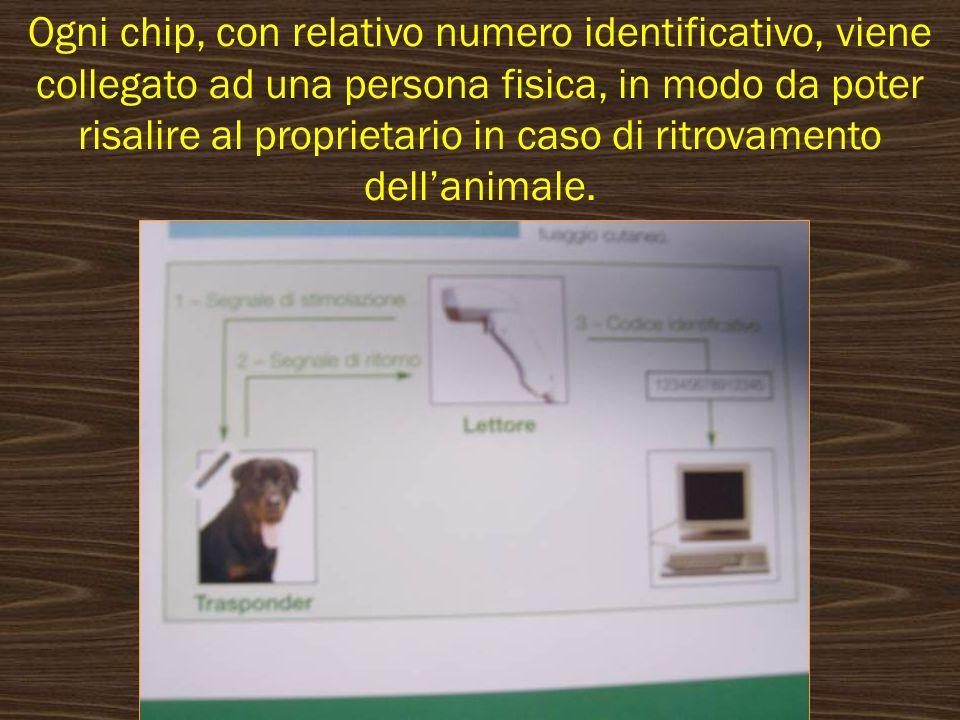 Ogni chip, con relativo numero identificativo, viene collegato ad una persona fisica, in modo da poter risalire al proprietario in caso di ritrovament
