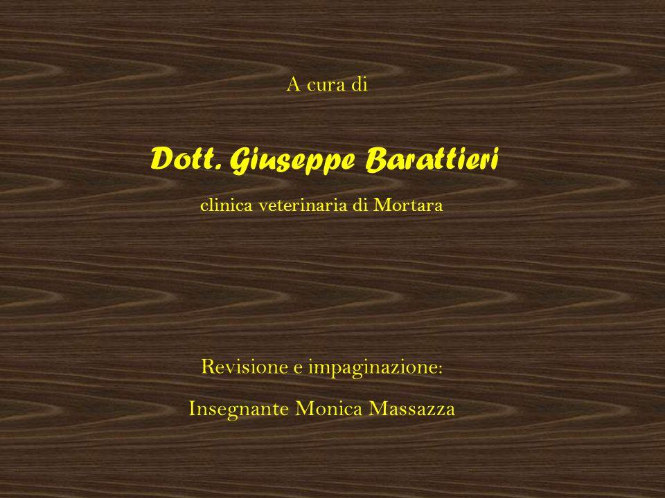 A cura di Dott. Giuseppe Barattieri Revisione e impaginazione: Insegnante Monica Massazza clinica veterinaria di Mortara