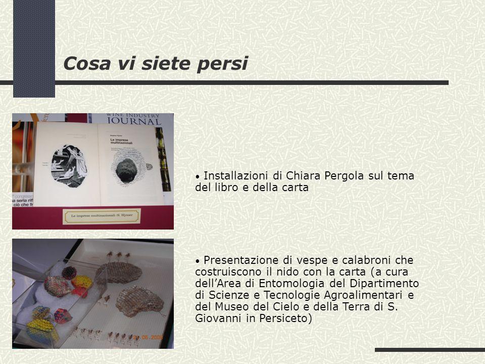 Cosa vi siete persi Installazioni di Chiara Pergola sul tema del libro e della carta Presentazione di vespe e calabroni che costruiscono il nido con l