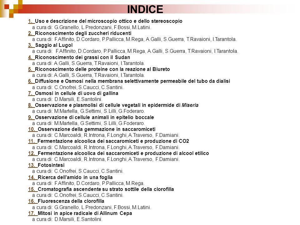 INDICE 1. 1. Uso e descrizione del microscopio ottico e dello stereoscopio a cura di: G.Granello, L.Predonzani, F.Bossi, M.Latini. 2. 2. Riconosciment