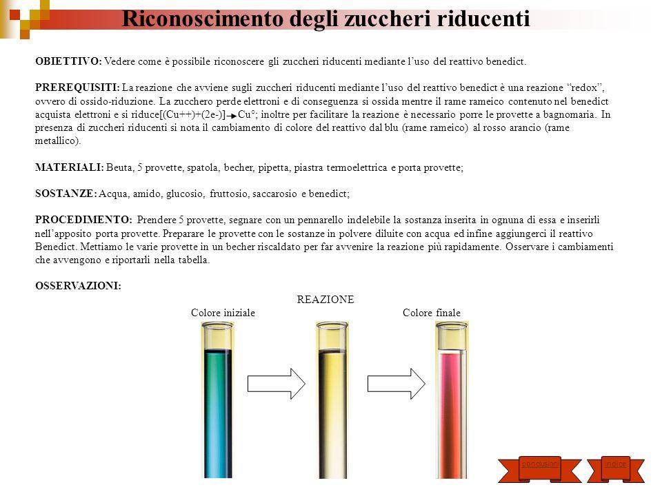 CONCLUSIONI: Grazie allutilizzo del reattivo Benedict è possibile riconoscere due zuccheri riducenti: il Glucosio e il Fruttosio; inoltre queste due sostanze sono presenti anche nella marmellata e nel miele.
