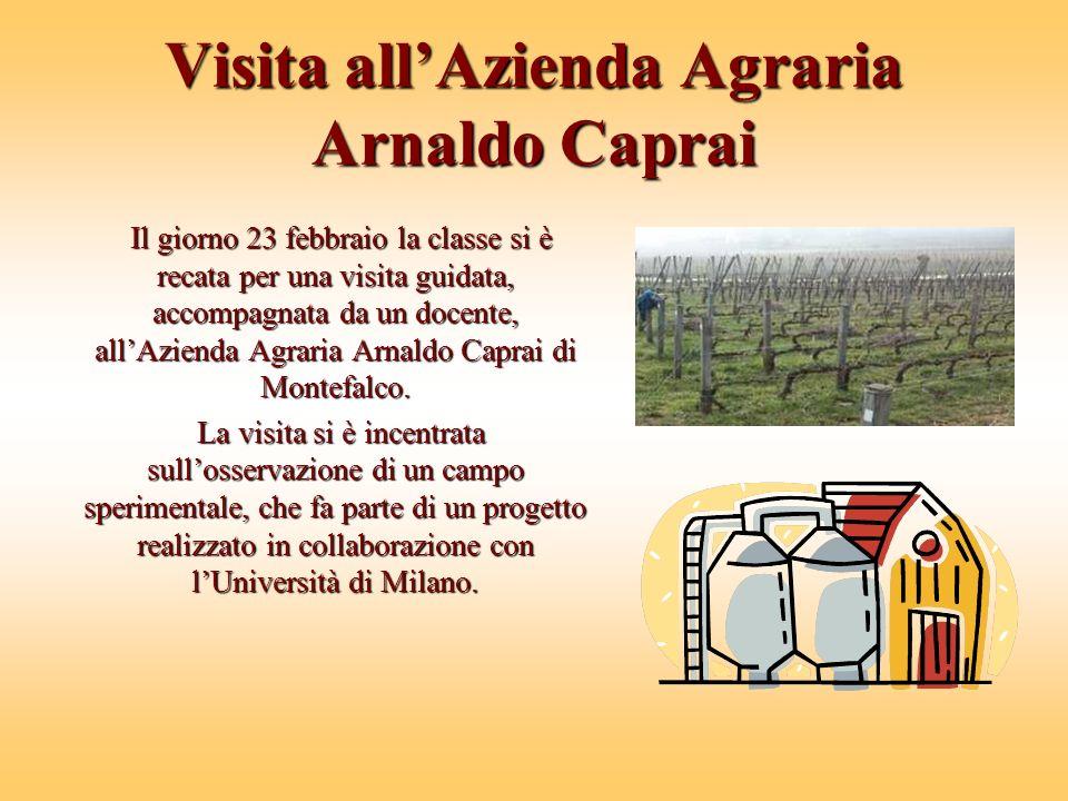 Visita allAzienda Agraria Arnaldo Caprai Il giorno 23 febbraio la classe si è recata per una visita guidata, accompagnata da un docente, allAzienda Agraria Arnaldo Caprai di Montefalco.