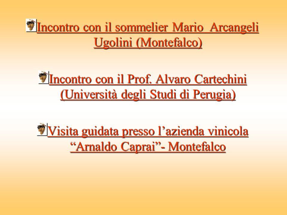 Incontro con il sommelier Mario Arcangeli Ugolini (Montefalco) Incontro con il sommelier Mario Arcangeli Ugolini (Montefalco) Incontro con il Prof.