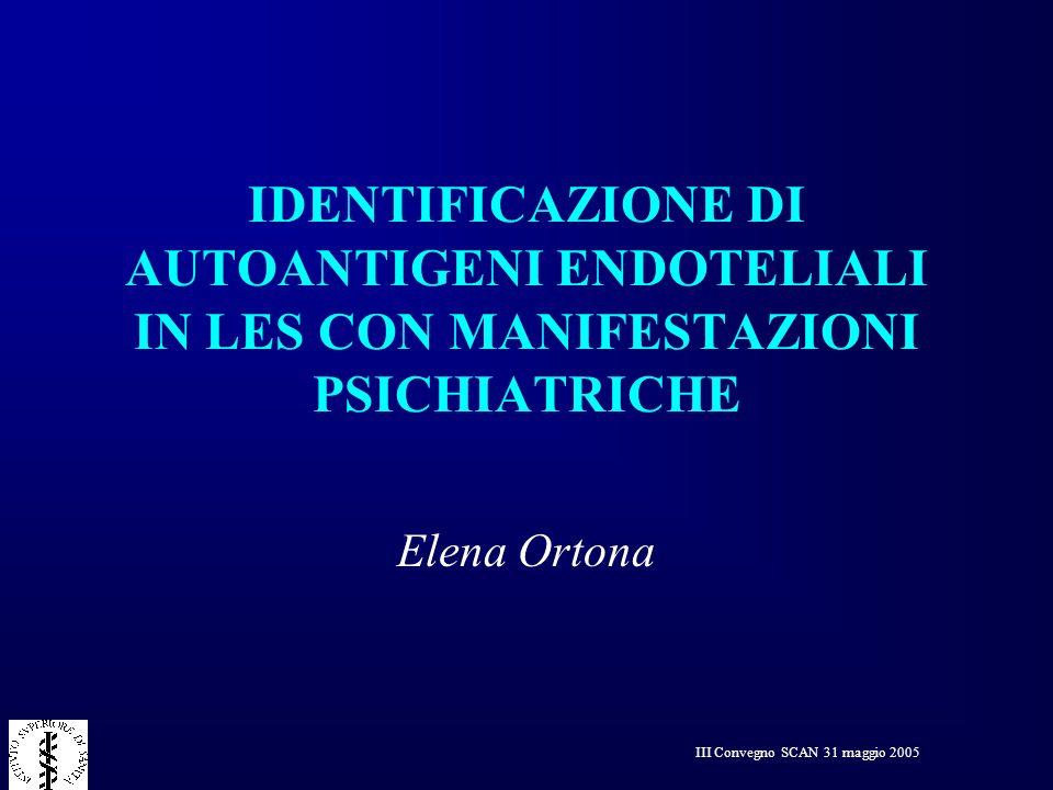 III Convegno SCAN 31 maggio 2005 IDENTIFICAZIONE DI AUTOANTIGENI ENDOTELIALI IN LES CON MANIFESTAZIONI PSICHIATRICHE Elena Ortona