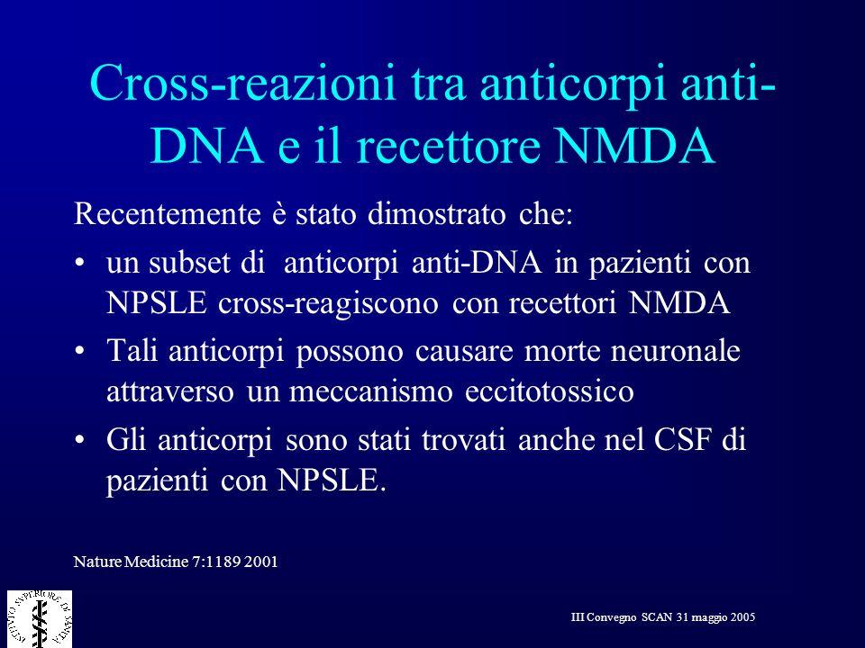 III Convegno SCAN 31 maggio 2005 Cross-reazioni tra anticorpi anti- DNA e il recettore NMDA Recentemente è stato dimostrato che: un subset di anticorp