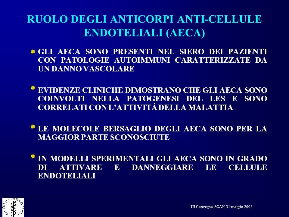 III Convegno SCAN 31 maggio 2005 RUOLO DEGLI ANTICORPI ANTI-CELLULE ENDOTELIALI (AECA) GLI AECA SONO PRESENTI NEL SIERO DEI PAZIENTI CON PATOLOGIE AUT