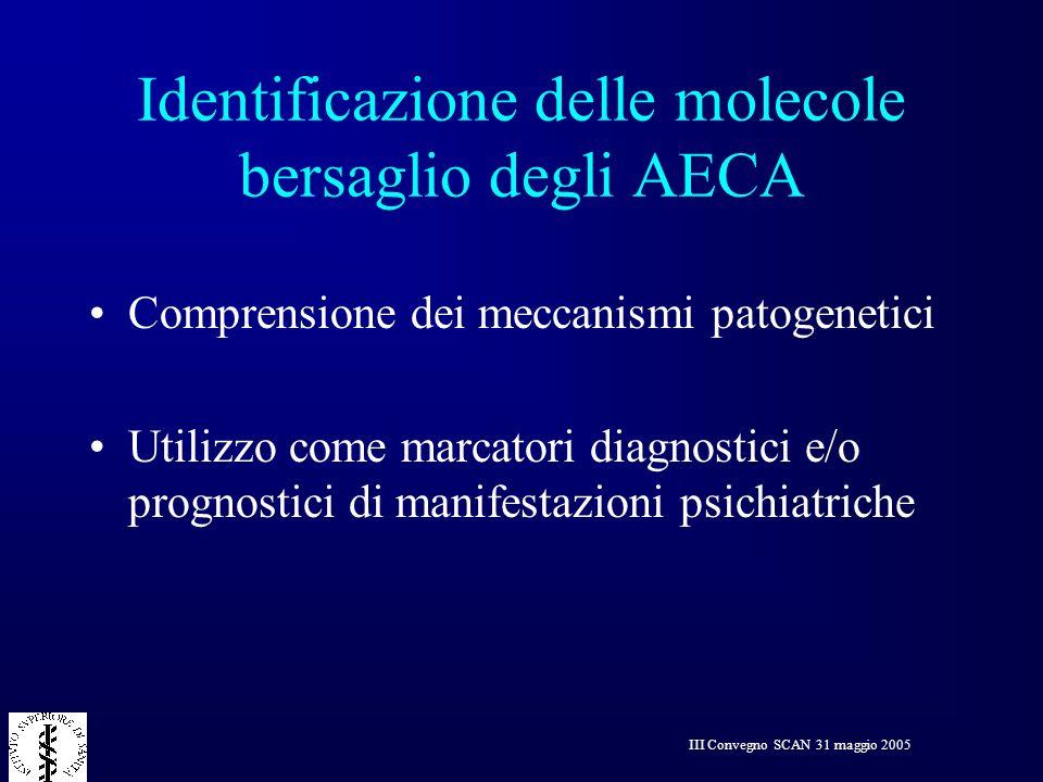 III Convegno SCAN 31 maggio 2005 Identificazione delle molecole bersaglio degli AECA Comprensione dei meccanismi patogenetici Utilizzo come marcatori