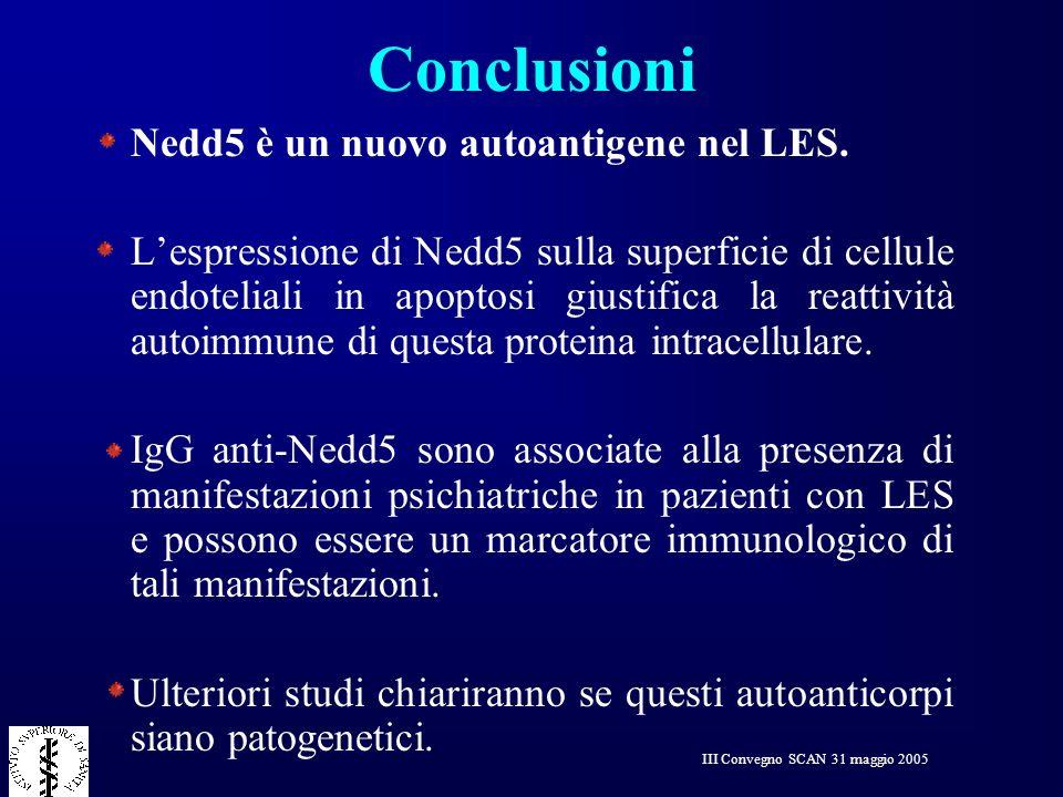 III Convegno SCAN 31 maggio 2005 Conclusioni Nedd5 è un nuovo autoantigene nel LES. Lespressione di Nedd5 sulla superficie di cellule endoteliali in a