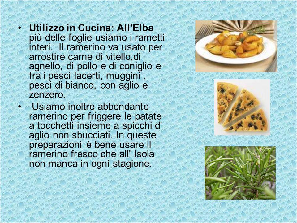 Utilizzo in Cucina: All'Elba più delle foglie usiamo i rametti interi. Il ramerino va usato per arrostire carne di vitello,di agnello, di pollo e di c