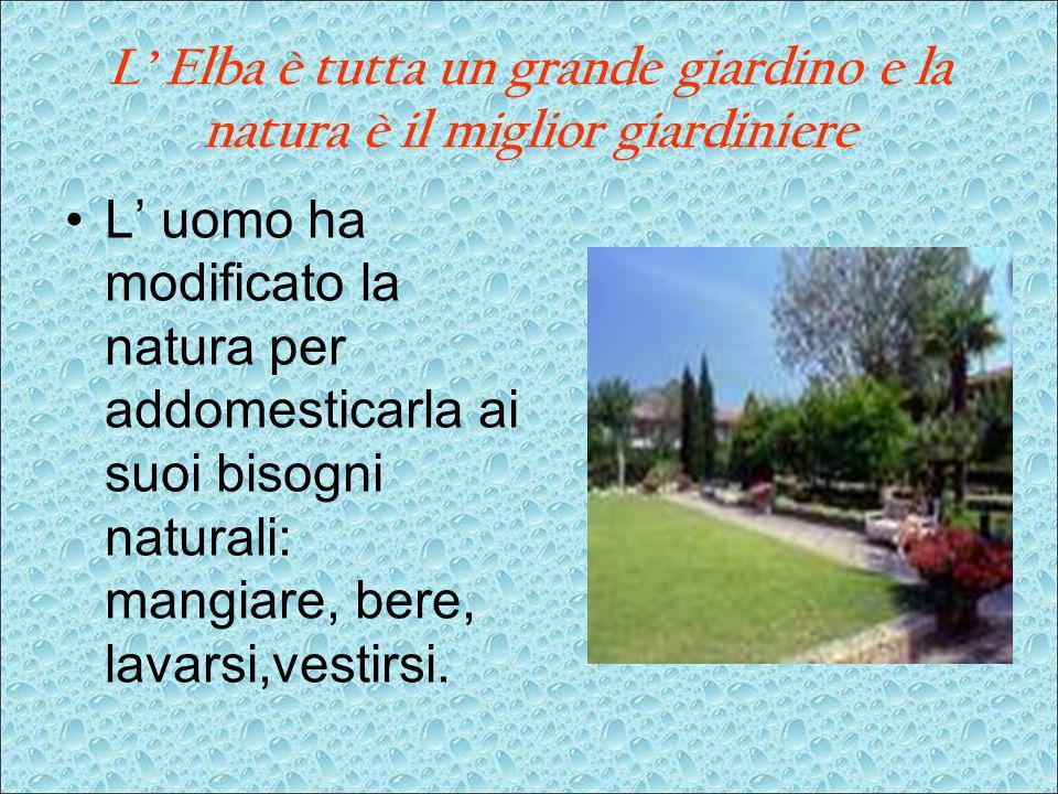 L Elba è tutta un grande giardino e la natura è il miglior giardiniere L uomo ha modificato la natura per addomesticarla ai suoi bisogni naturali: man