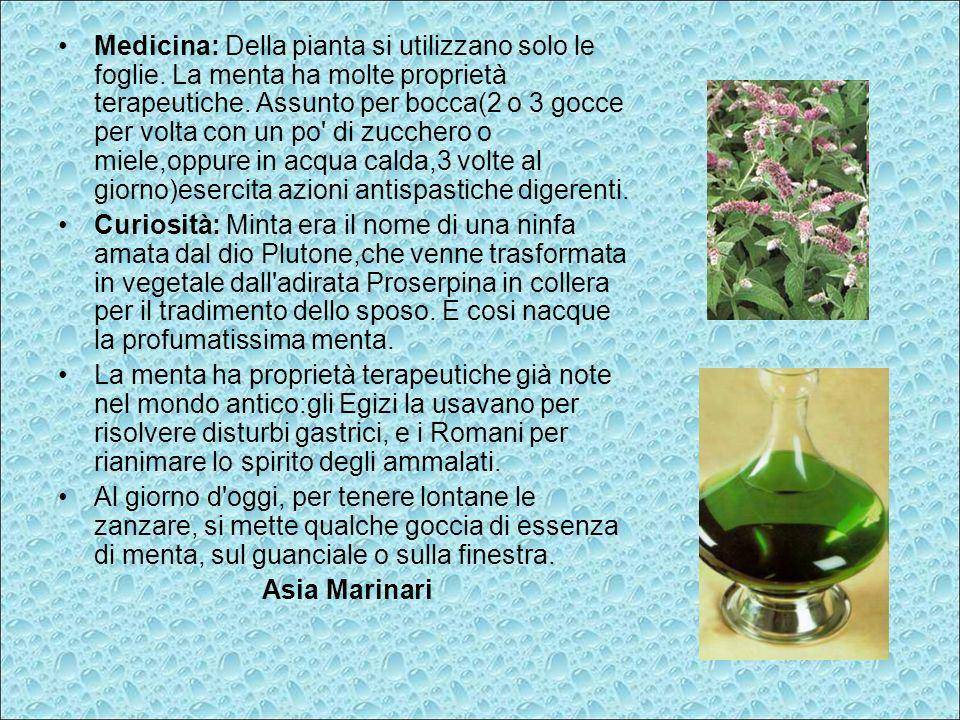 Medicina: Della pianta si utilizzano solo le foglie. La menta ha molte proprietà terapeutiche. Assunto per bocca(2 o 3 gocce per volta con un po' di z