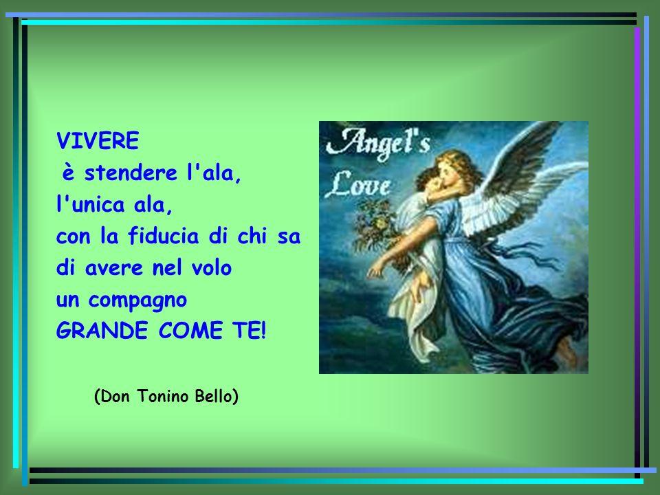 VIVERE è stendere l'ala, l'unica ala, con la fiducia di chi sa di avere nel volo un compagno GRANDE COME TE! (Don Tonino Bello)