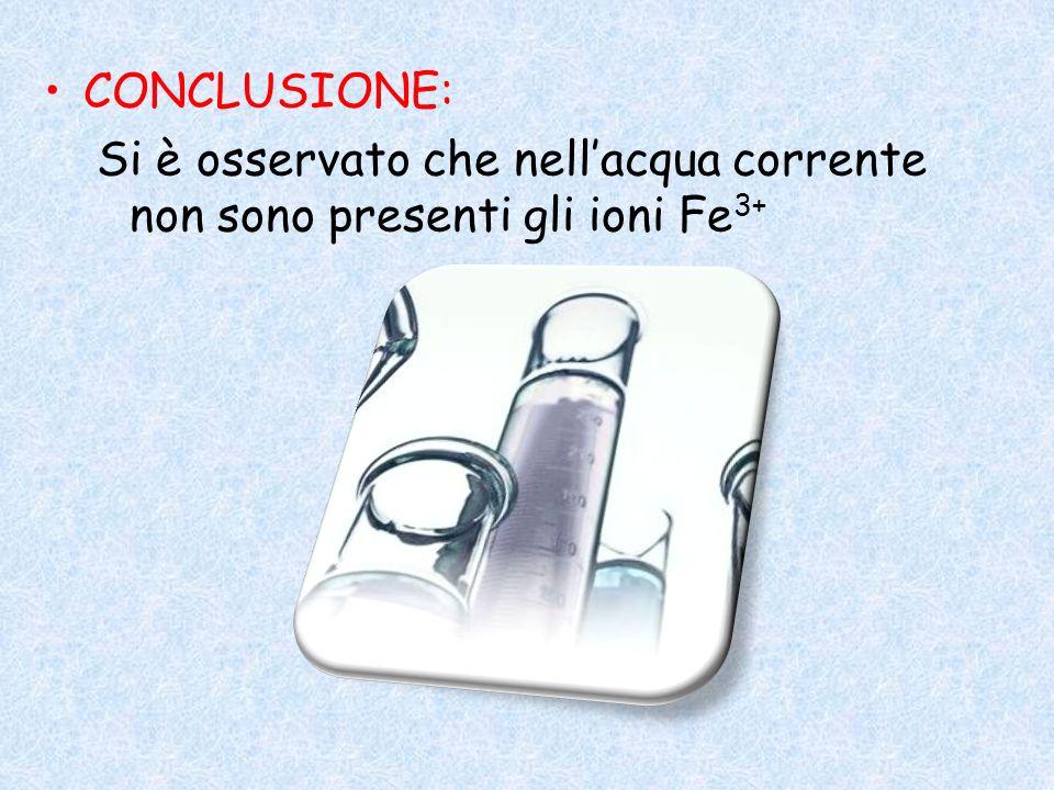 CONCLUSIONE: Si è osservato che nellacqua corrente non sono presenti gli ioni Fe 3+