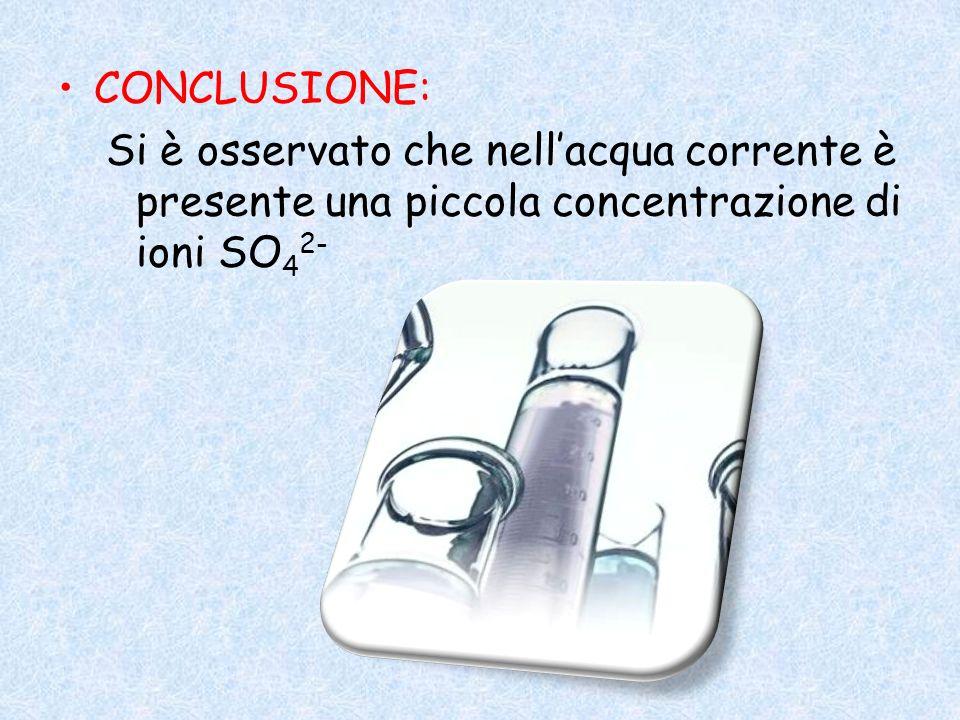 CONCLUSIONE: Si è osservato che nellacqua corrente è presente una piccola concentrazione di ioni SO 4 2-