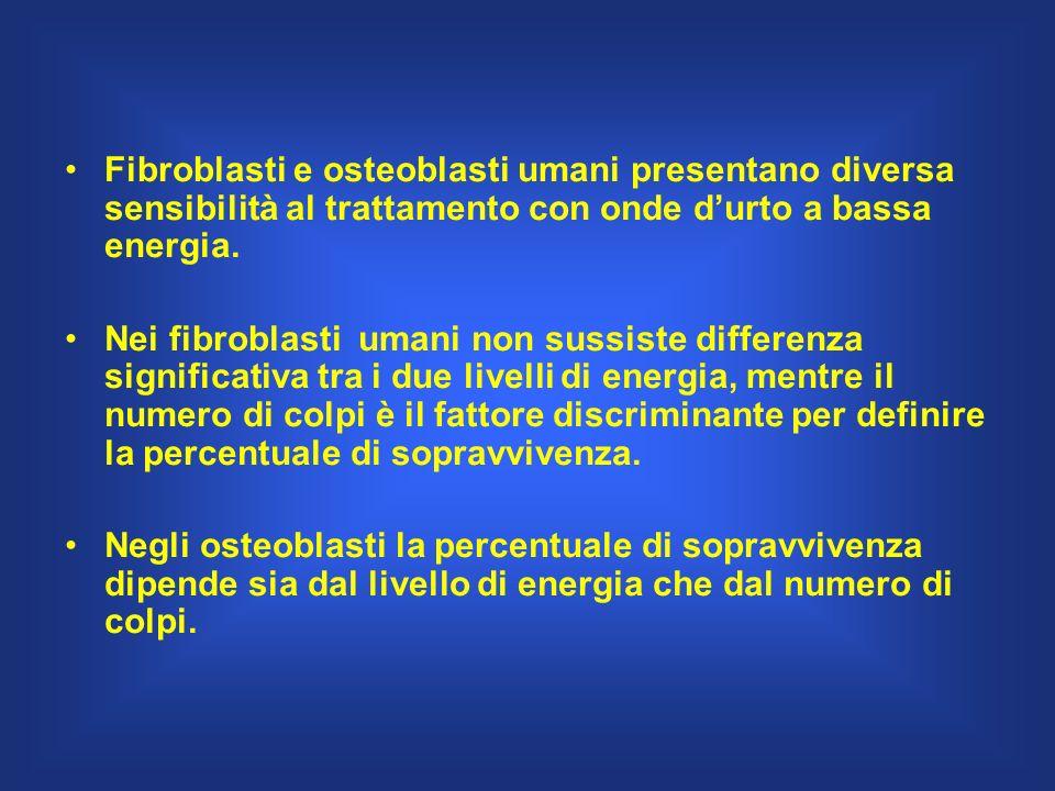 Fibroblasti e osteoblasti umani presentano diversa sensibilità al trattamento con onde durto a bassa energia. Nei fibroblasti umani non sussiste diffe