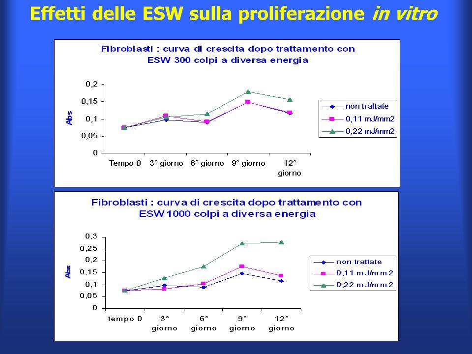 Effetti delle ESW sulla proliferazione in vitro