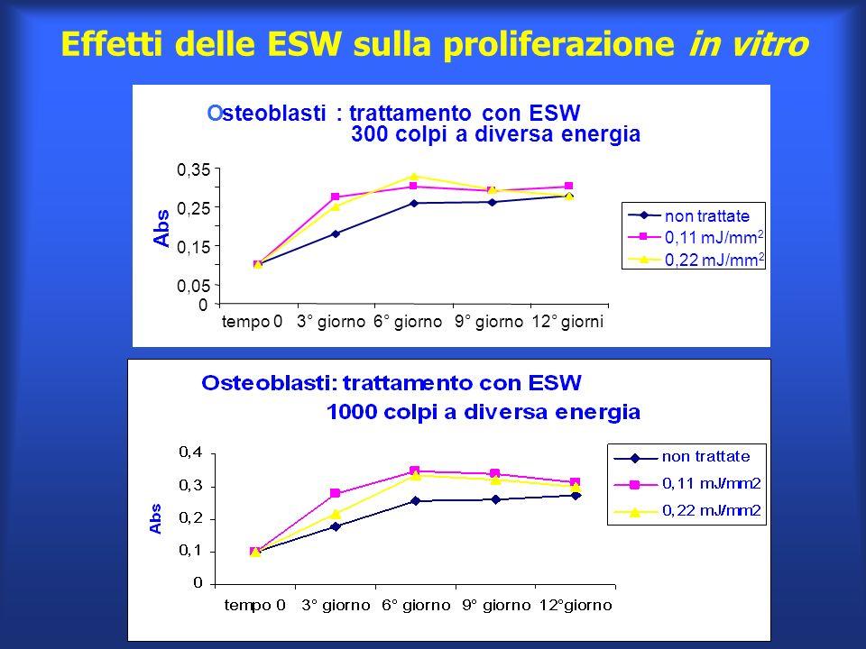 * Osteoblasti : trattamento con ESW 300 colpi a diversa energia 0 0,05 0,15 0,25 0,35 Abs non trattate 0,11 mJ/mm 2 0,22 mJ/mm 2 tempo 0 3° giorno 6°