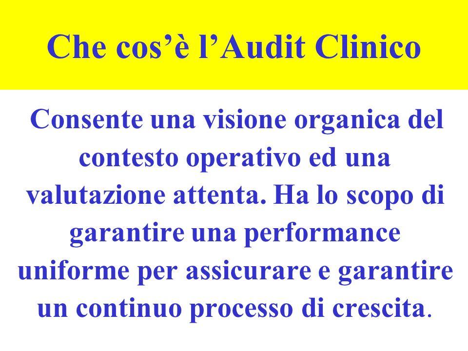 Che cosè lAudit Clinico Consente una visione organica del contesto operativo ed una valutazione attenta.