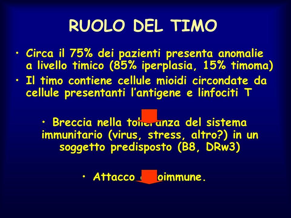 RUOLO DEL TIMO Circa il 75% dei pazienti presenta anomalie a livello timico (85% iperplasia, 15% timoma) Il timo contiene cellule mioidi circondate da