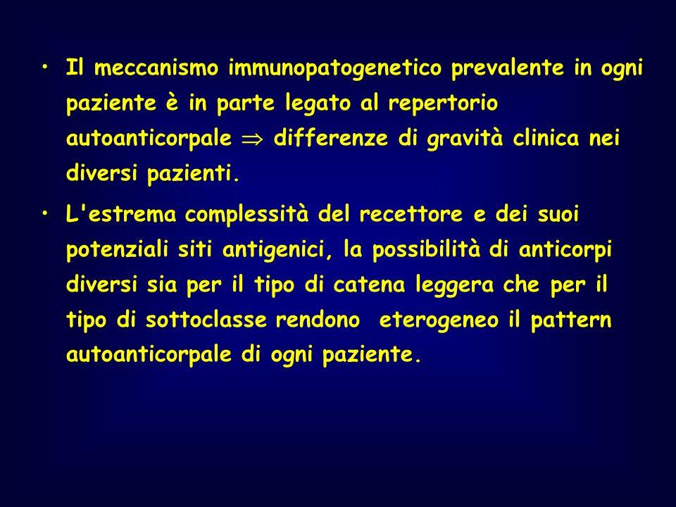 Il meccanismo immunopatogenetico prevalente in ogni paziente è in parte legato al repertorio autoanticorpale differenze di gravità clinica nei diversi