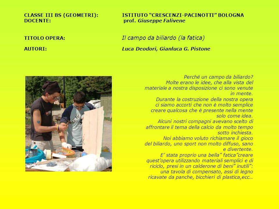 CLASSE III BS (GEOMETRI): ISTITUTO CRESCENZI-PACINOTTI BOLOGNA DOCENTE: prof.