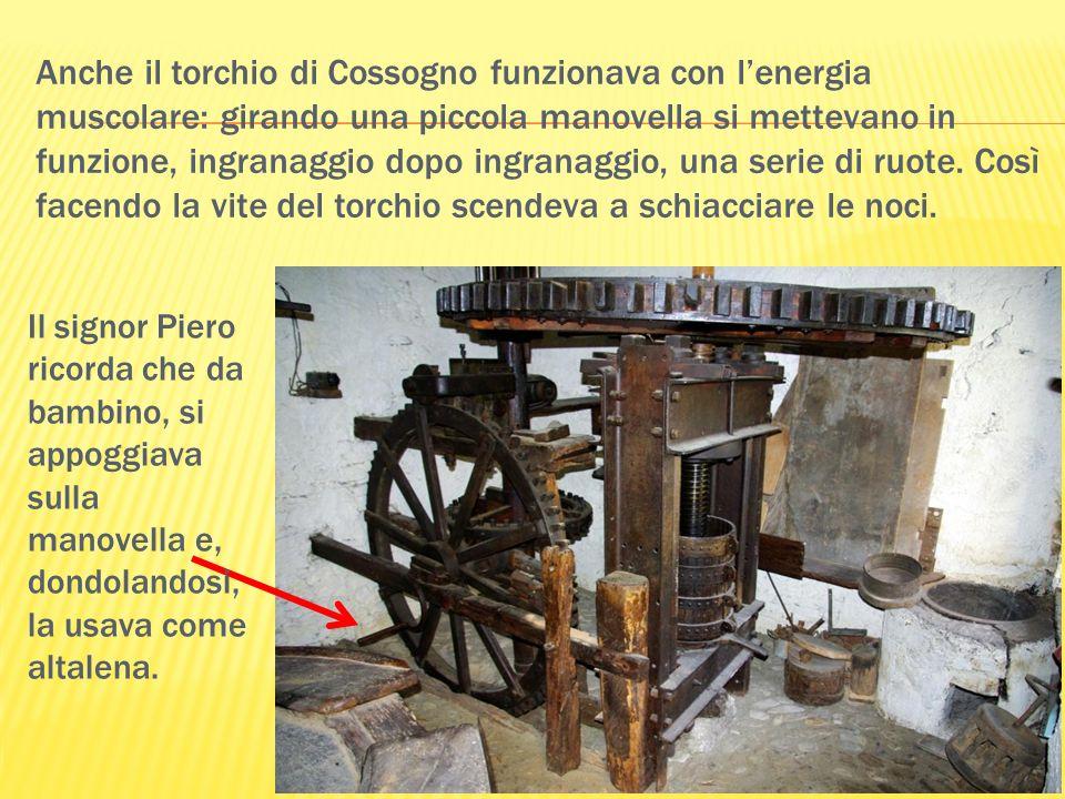 Anche il torchio di Cossogno funzionava con lenergia muscolare: girando una piccola manovella si mettevano in funzione, ingranaggio dopo ingranaggio,
