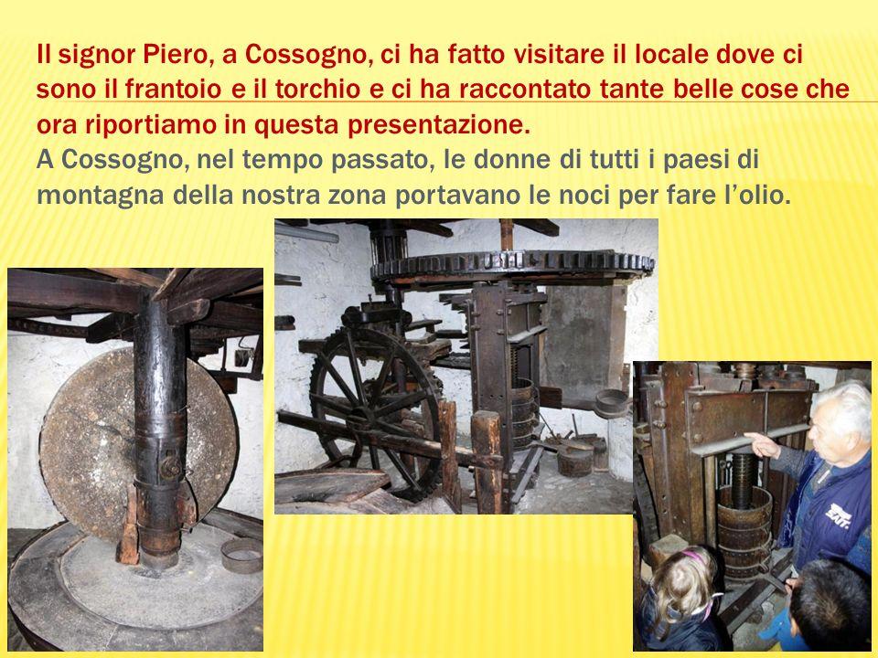Il signor Piero, a Cossogno, ci ha fatto visitare il locale dove ci sono il frantoio e il torchio e ci ha raccontato tante belle cose che ora riportia