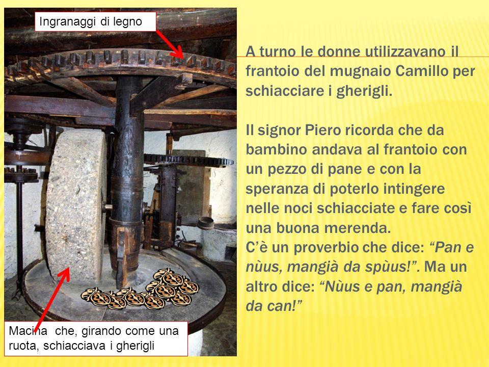 A turno le donne utilizzavano il frantoio del mugnaio Camillo per schiacciare i gherigli. Il signor Piero ricorda che da bambino andava al frantoio co