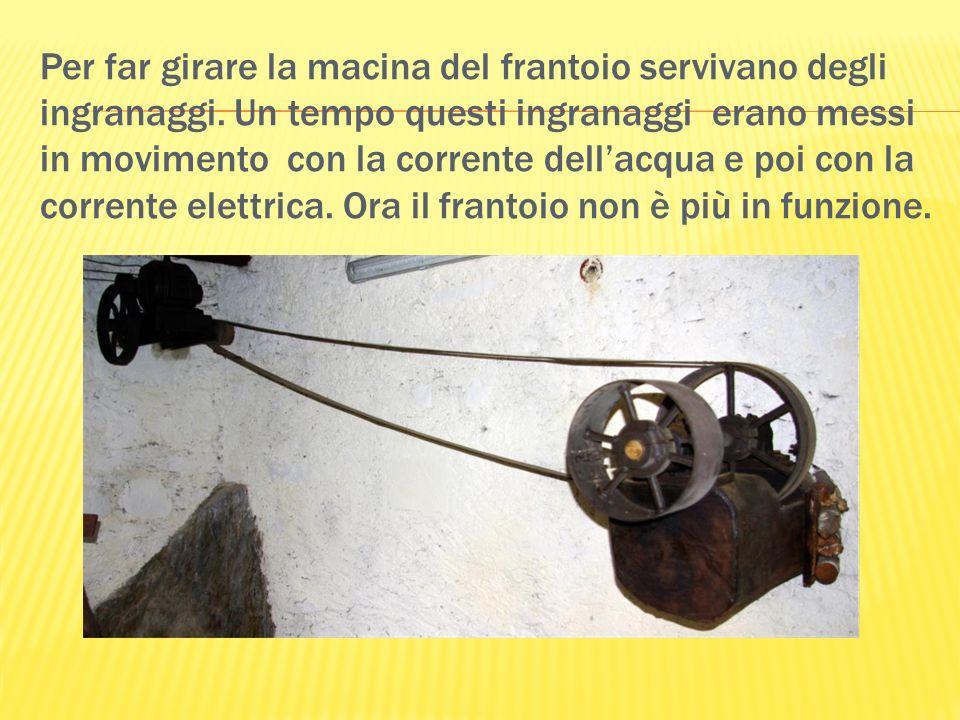 Per far girare la macina del frantoio servivano degli ingranaggi. Un tempo questi ingranaggi erano messi in movimento con la corrente dellacqua e poi