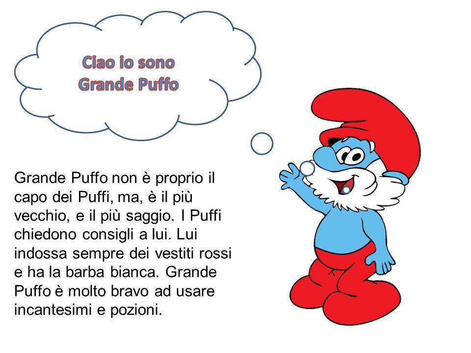 Grande Puffo non è proprio il capo dei Puffi, ma, è il più vecchio, e il più saggio. I Puffi chiedono consigli a lui. Lui indossa sempre dei vestiti r