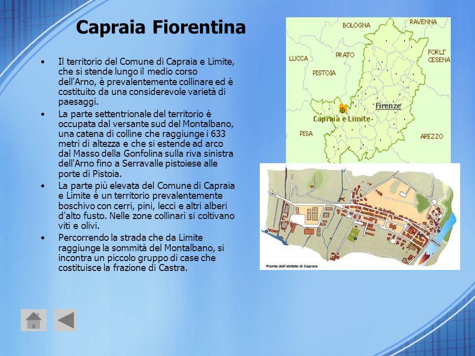 Capraia Fiorentina Il territorio del Comune di Capraia e Limite, che si stende lungo il medio corso dell'Arno, è prevalentemente collinare ed è costit