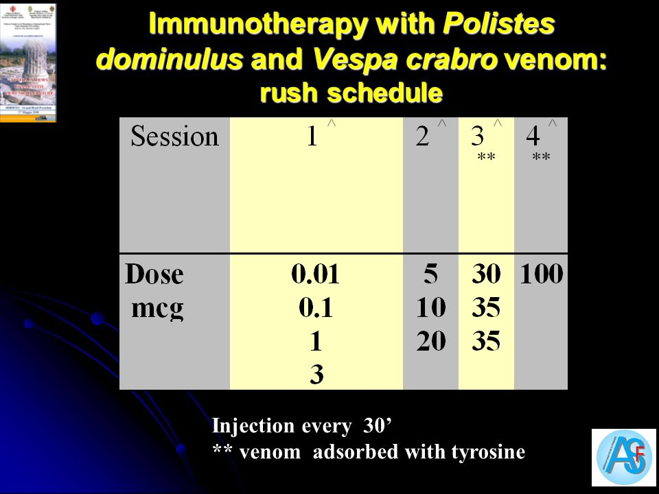 Immunotherapy with Polistes dominulus and Vespa crabro venom: rush schedule Injection every 30 ** venom adsorbed with tyrosine