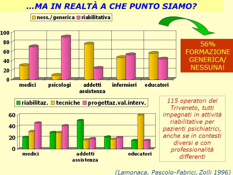 …MA IN REALTÀ A CHE PUNTO SIAMO? (Lamonaca, Pascolo-Fabrici, Zolli 1996) 115 operatori del Triveneto, tutti impegnati in attività riabilitative per pa