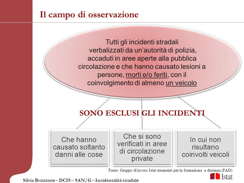 Silvia Bruzzone – DCIS – SAN/G – Incidentalità stradale Il campo di osservazione Che hanno causato soltanto danni alle cose Che si sono verificati in
