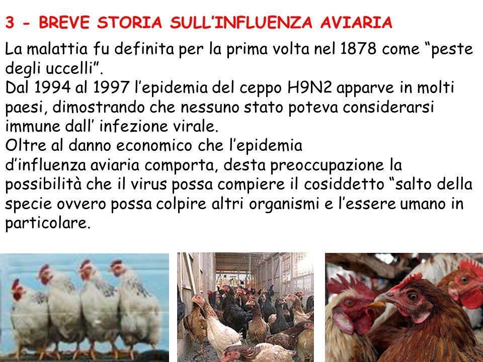 3 - BREVE STORIA SULLINFLUENZA AVIARIA La malattia fu definita per la prima volta nel 1878 come peste degli uccelli. Dal 1994 al 1997 lepidemia del ce