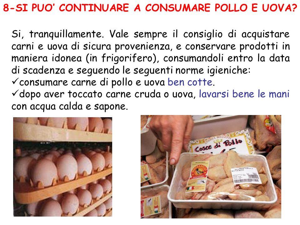 8-SI PUO CONTINUARE A CONSUMARE POLLO E UOVA? Si, tranquillamente. Vale sempre il consiglio di acquistare carni e uova di sicura provenienza, e conser