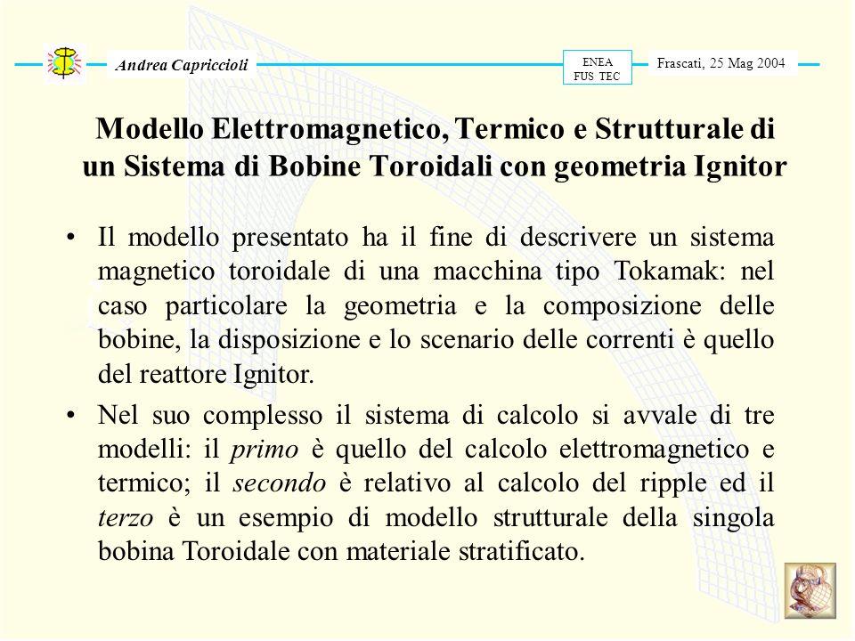 Modello Elettromagnetico, Termico e Strutturale di un Sistema di Bobine Toroidali con geometria Ignitor Frascati, 25 Mag 2004 ENEA FUS TEC Andrea Capr