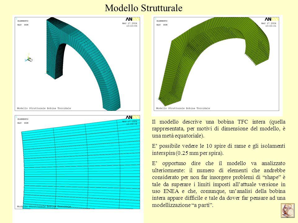 Modello Strutturale Il modello descrive una bobina TFC intera (quella rappresentata, per motivi di dimensione del modello, è una metà equatoriale). E