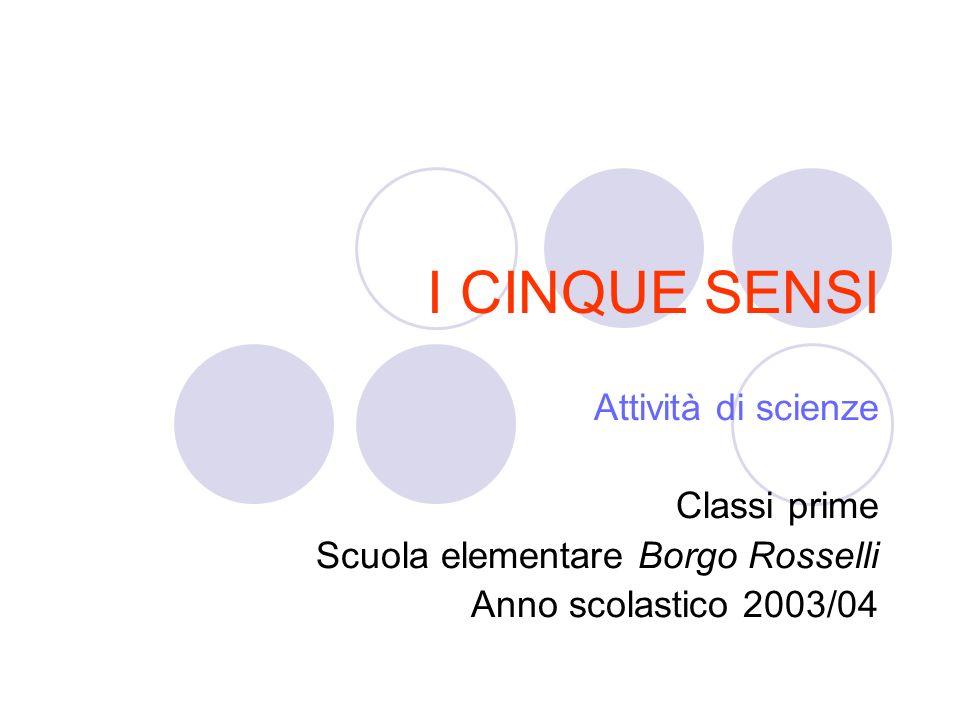 I CINQUE SENSI Attività di scienze Classi prime Scuola elementare Borgo Rosselli Anno scolastico 2003/04