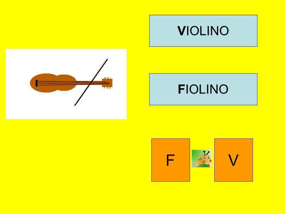 VIOLINO FIOLINO FV