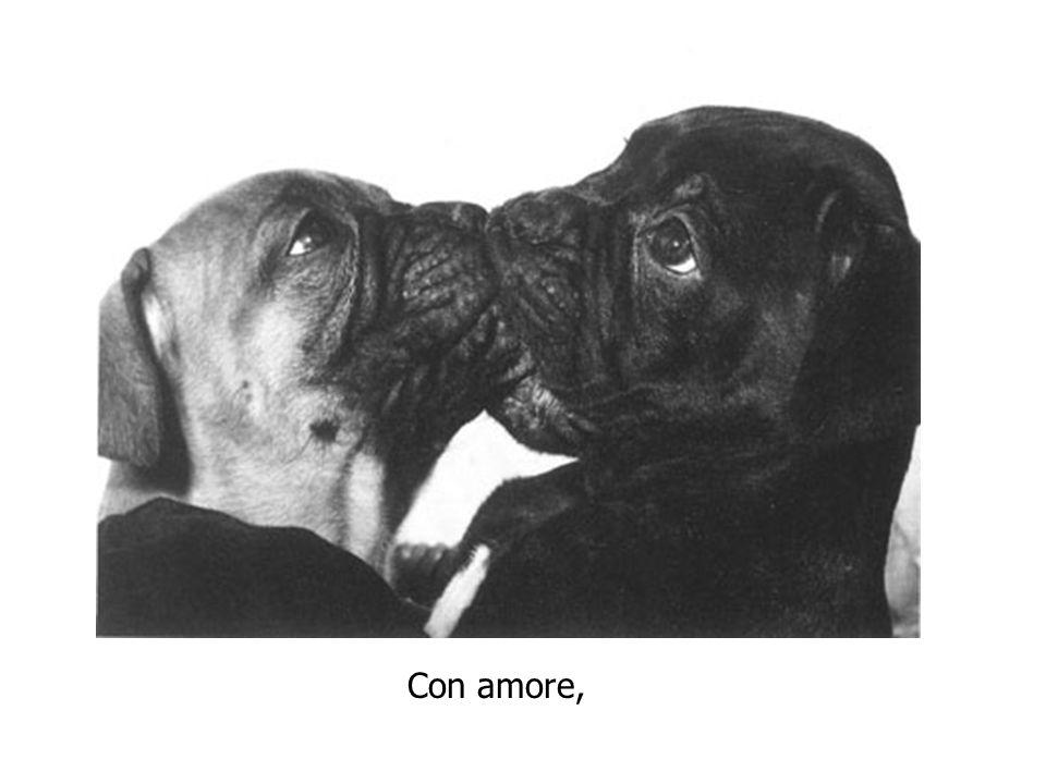 Con amore,