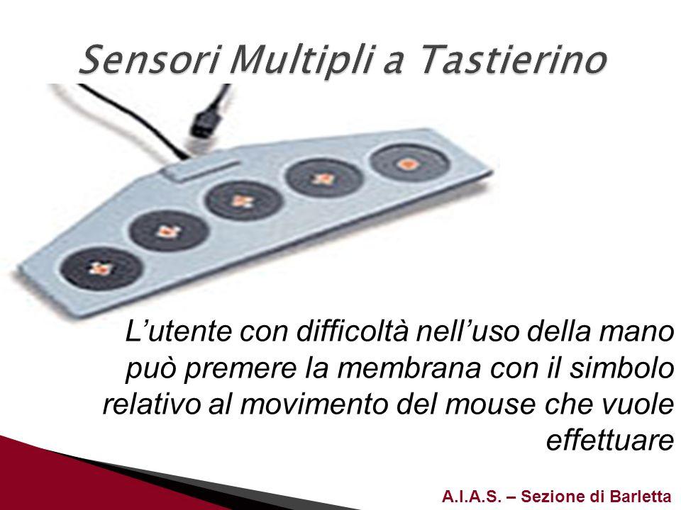 A.I.A.S. – Sezione di Barletta Lutente con difficoltà nelluso della mano può premere la membrana con il simbolo relativo al movimento del mouse che vu