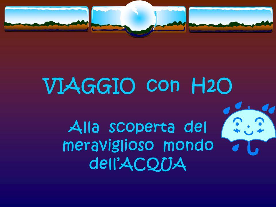 VIAGGIO con H2O Alla scoperta del meraviglioso mondo dellACQUA