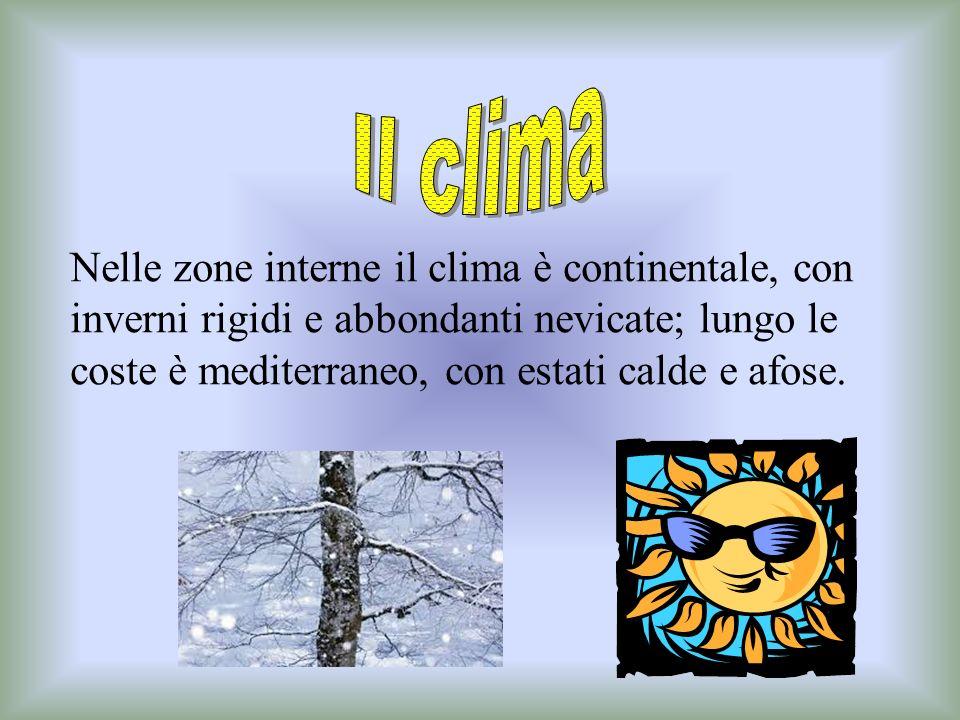 Montagna 47% Collina 45% Pianura 8% La maggior parte del territorio è montuoso e collinare. I monti più alti sono:M. Vulture (1326m),M. Santa Croce (1