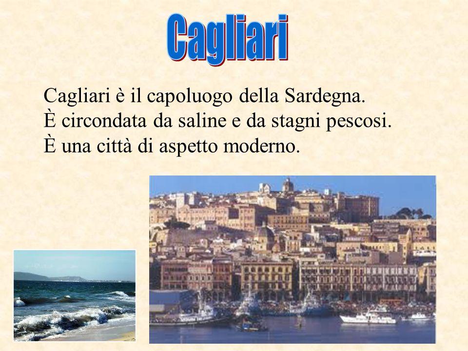 I turisti sono attirati dalla bellezza delle coste della Sardegna. Lagricoltura e sfavorita dal terreno arido e poco fertile. Grazie allirrigazione ar