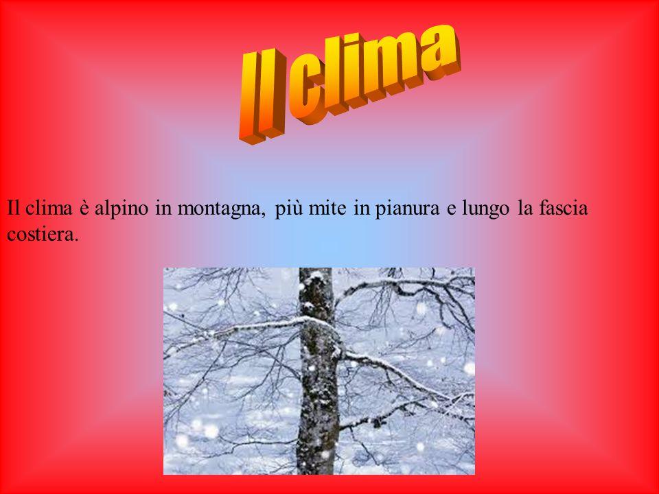 Il clima è alpino in montagna, più mite in pianura e lungo la fascia costiera.