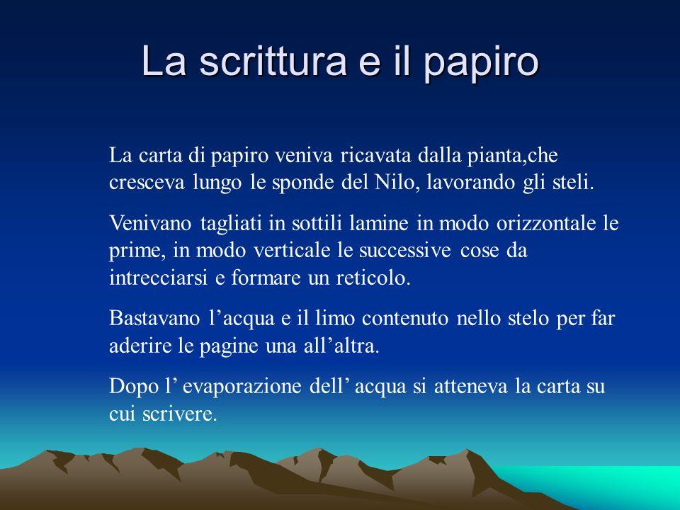La scrittura e il papiro La carta di papiro veniva ricavata dalla pianta,che cresceva lungo le sponde del Nilo, lavorando gli steli.