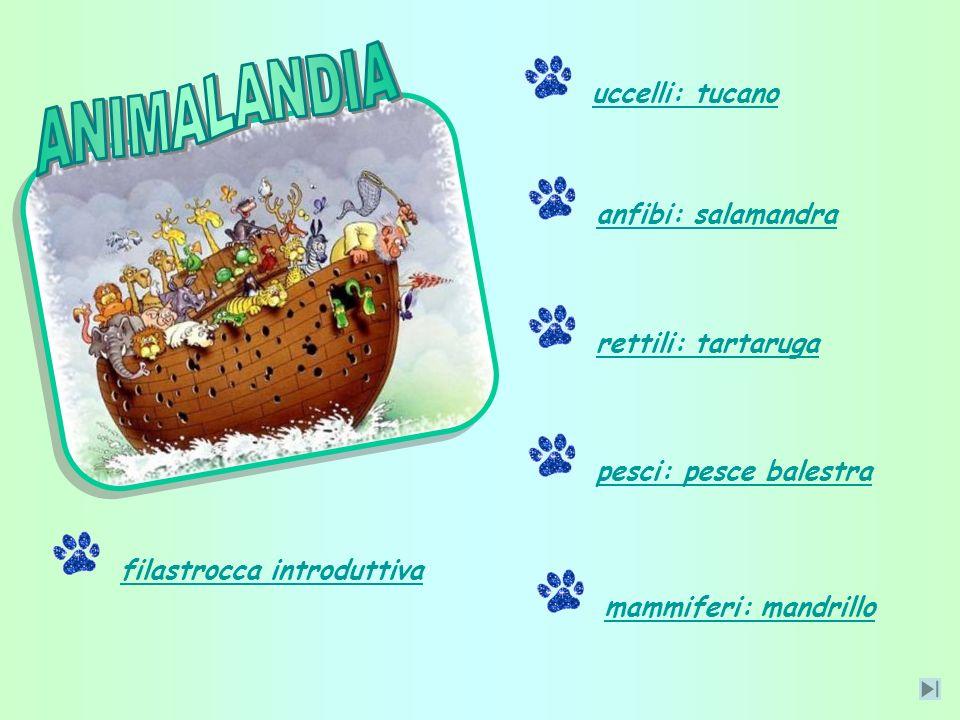 … un viaggio alla scoperta degli animali che abitano la nostra Terra … Elaborato da: Agnesa, Alessandro, Alessia, Antonio, Christian G., Christian R.,