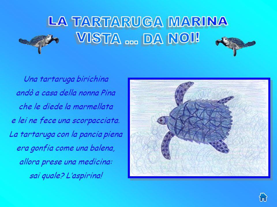 Le tartarughe marine depongono le uova in buche scavate nella sabbia, sempre sulle stesse spiagge che raggiungono nuotando per migliaia di chilometri